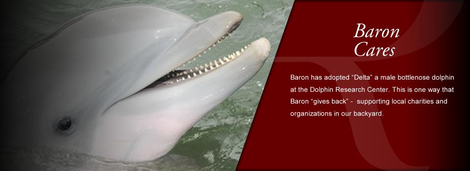 Baron Group LLC